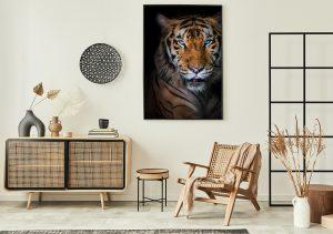 Poster Katze Tiger im Boho-Wohnzimmer